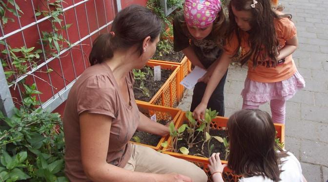 Biopolino – der Garten auf dem Schulhof